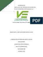Plan de Mejoramiento en El Area Comercial en Los Procesos de Facturacion Electronica en Veterinaria Especializada s (1) (1)