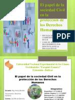 d.h El Papel de La Sociedad Civil en La Proteccion de Los Dh
