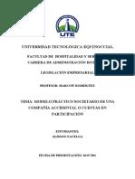 COMPAÑIA ACCIDENTAL - CONSTITUCION