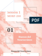 SESION 1 MORF 200_compressed-2