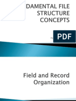 Fundamental File Structure Concepts-report