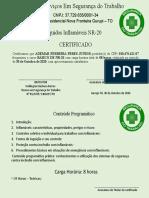 CERTIFICADOS DE NR 20