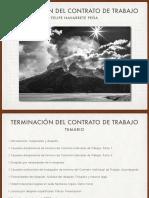 Terminacion contrato de trabajo - FNP