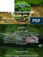 AUDITORIA_AMBIENTAL_-_Copiar[1]