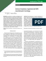 Recombinería en Bacterias Ingeniería Del ADN