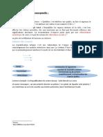 2 CHAPITRE 1 analyse conceptuelle