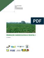 Produção Agroecologica Vegetal