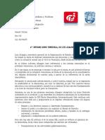4to Informe de Almagro