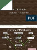 Carbohydrate_Metabolism_MED 1043 09,10