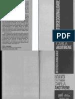 [Feminismos Plurais] Carla Akotirene - interseccionalidade (0)