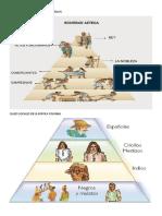 Clases Sociales de La Civilizacion Maya