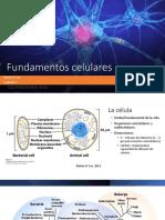 2. Fundamentos Celulares, Químicos, Físicos, Genéticos