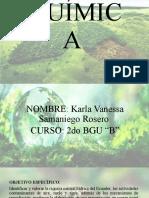 2B Karla Samaniego Proyecto Interdisciplinario Química