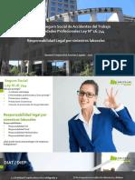 Responsabilidad Civil y Penal 2020 PPT