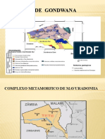 Terrenos de  Gondwana