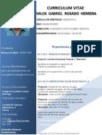 Curriculum Vitae Ing Carlos Rosado Herrera