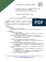 EL PODER DE FISCALIZACION EN LOS COLEGIOS PROFESIONALES