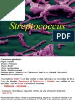 Streptococcus PPT NATECHE 2020