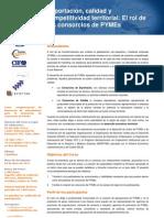 Curso Consorcios Exportacion y Calidad PYMES Turin 2011