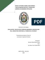 Evaluación y Seleccion de Trépanos - Mariel Borora
