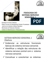 Fisiologia do Sistema sensorial