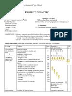 proiect_didactic_v_d