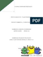 proyectoambiental2