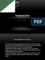 PELMATOSCOPIA, rg.