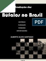 historico_bufalos