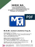 mantenimiento-motor-MGM-ba