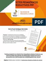 8. Presentación PPP