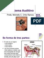 Sistema Auditivo Clase I