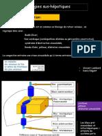 Pathologies-sus-hépatiques-VLDR++++++