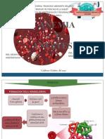 anemia y anestesia