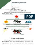 Los incendios forestales- 7mo