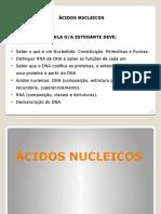 AULA 7 - DNA