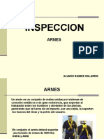 Inspecciondearneses 120714223722 Phpapp01 (2)
