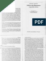 5. Husserl - Arbeit an Den Phänomenen