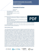 Ch2Cours-Potentiel daction