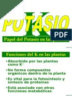 Papel de K en las plantas