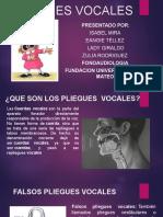 PLIEGUES VOCALES (1) (1)