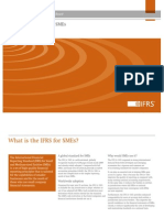 GuideTo IFRS for SMEs 2010 Oct