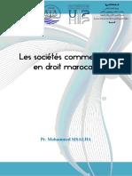 Droit Des Societes Commerciales