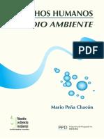 Derechos Humanos y Medio Ambiente (Mario Peña Chacón)