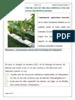 Mecanismes d Absorption de l Eau Et Des Sels Mineraux Chez Les Plantes Cours 2