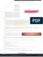 Prothèses complètes fixes sur implants _ Bücco