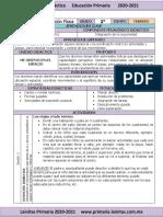 Planeación e. Fis. Febrero 2021