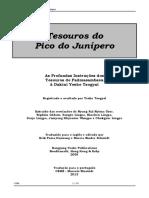 Padmasambava - Tesouros do Pico do Junipero