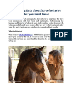 Interesting Facts About Horse Behavior That You Must Know