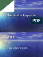 pertemuan 11 (respirasi, glikolisis, siklus krebs)